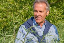 Le directeur de l'IRBV, Michel Labrecque, a mené plusieurs expériences dans la nature pour sélectionner les championnes végétales de la décontamination.