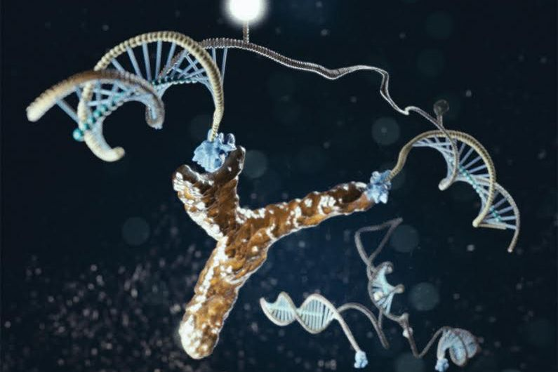 The light-generating DNA antibody detecting nanomachine is illustrated here in action, bound to an antibody.