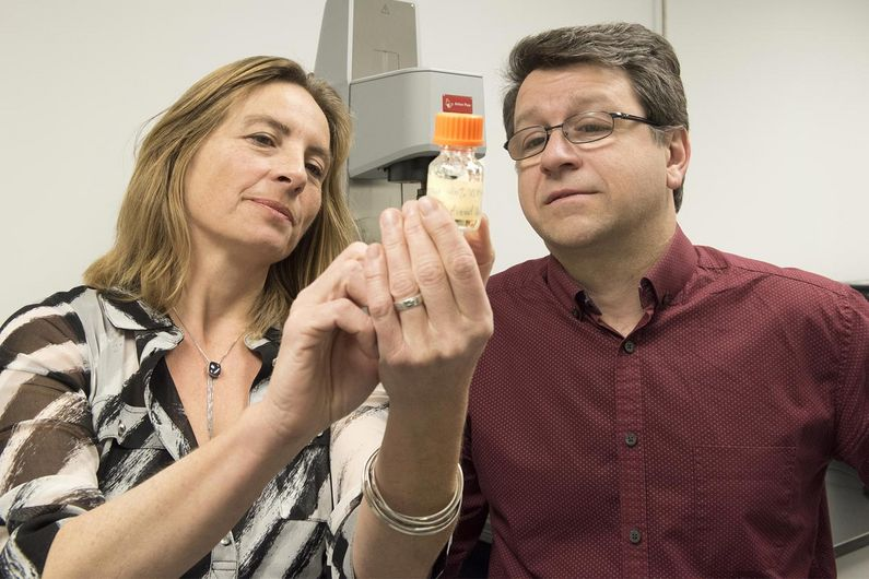 Sophie Lerouge and Réjean Lapointe examine the cancer fighting biogel they have developped.
