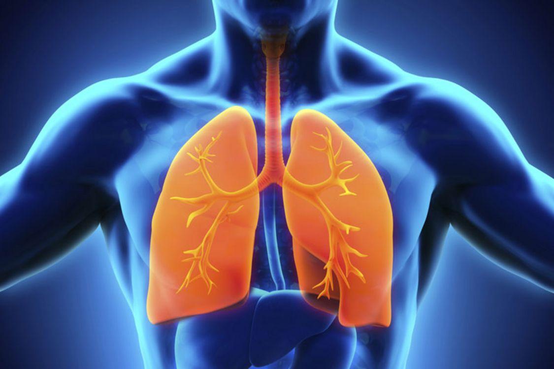 A Biomarker for Diagnosing Pulmonary Hypertension | UdeMNouvelles