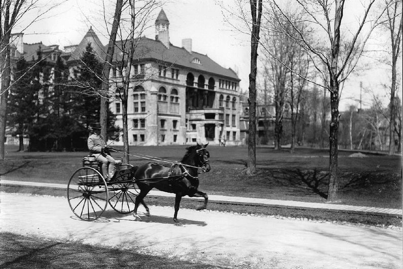 A horse and sulky belonging to a Mr. Grant on the grounds of McGill University in 1900.