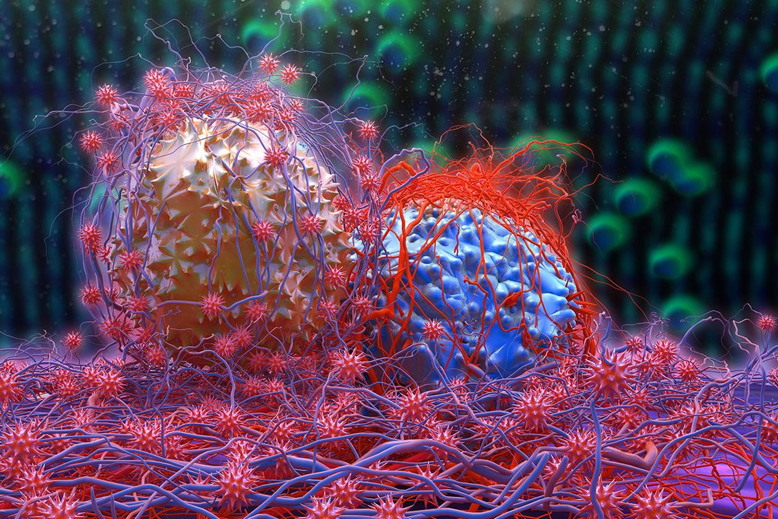Scientists Discover A New Mechanism That Prevents The Proliferation Of Cancer Cells