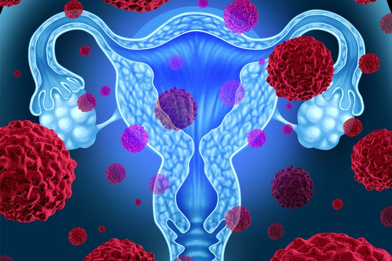 This discovery brings hope for developing more effective therapies to combat one of the most prevalent and dangerous cancers in women.