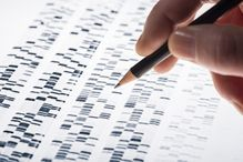 A team of researchers has succeeded in using  bioinformatics to develop a statistical model to assess how the gain or loss of genetic material impacts the risk of autism.