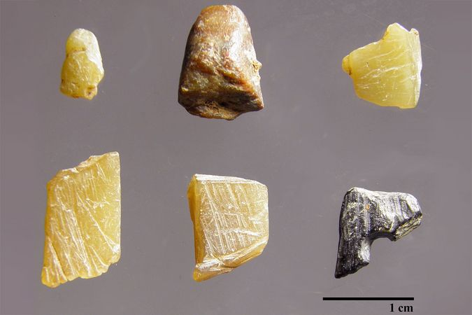 Some objects found in a prehistoric rock shelter called Riparo Bombrini, in Liguria on the Italian Riviera, by archeologists at Université de Montréal and the University of Genoa.